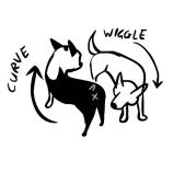 la passeggiata con due cani