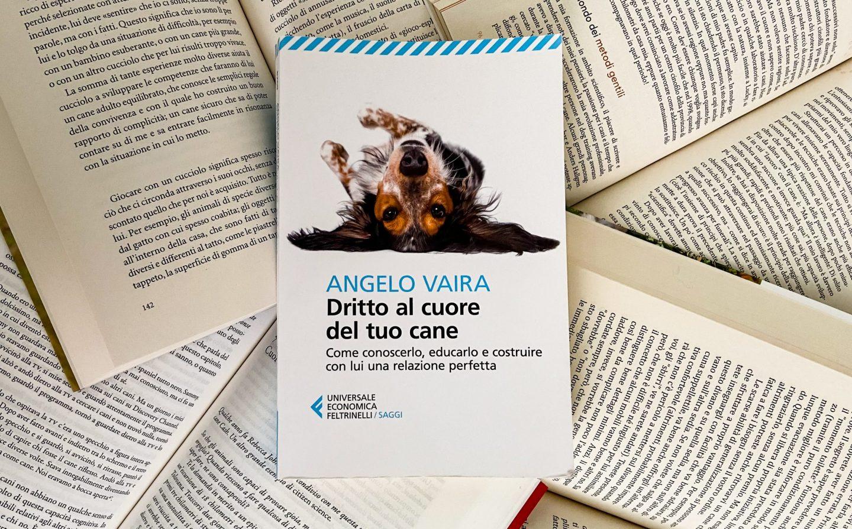Quattro libri consigliati da Angelo Vaira