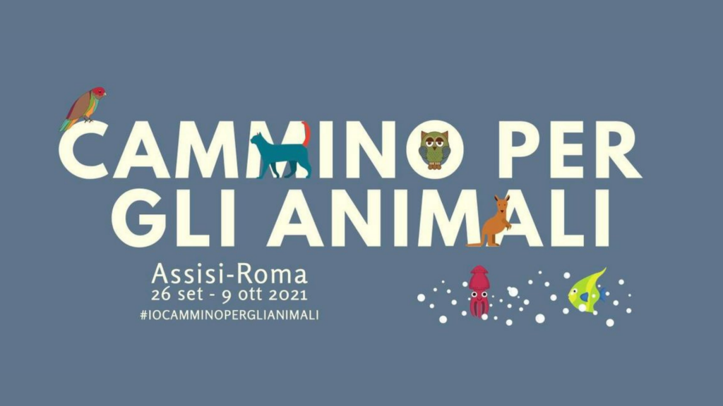 Cammino per gli animali
